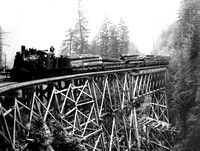 Train #202 Train stopped on trestle built in 1916 Pugent Sound