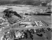 1964 Aerial View of the new Purity Shopping Center in Fortuna