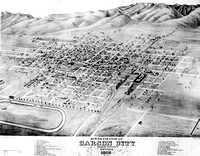 Birds eye view of Carson City Nevada 1875