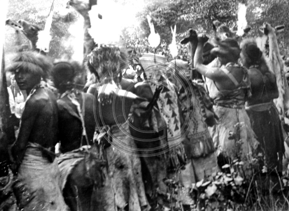 Native Americans #002 White Deer Skin Dance