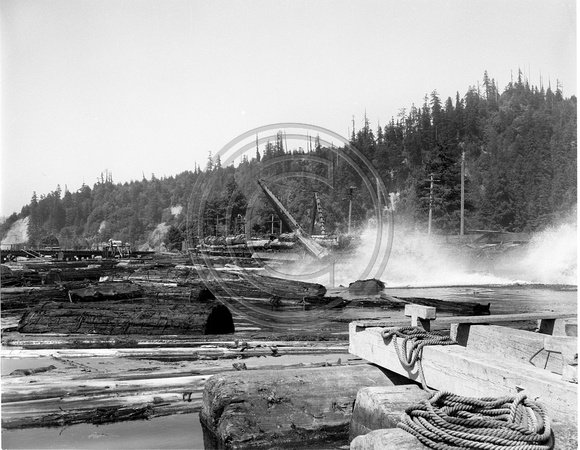 Pacific Lumber Company Log Deck