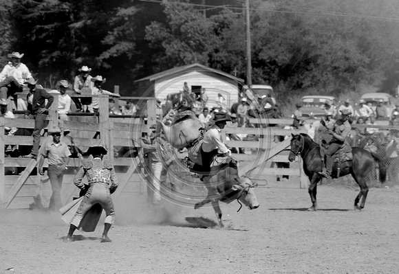 The Old Photo Guy Fortuna California Bull Riding At