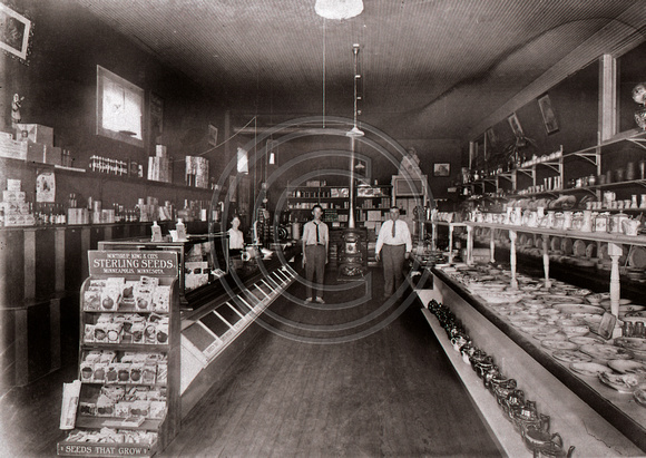 Store Interior early 1900s