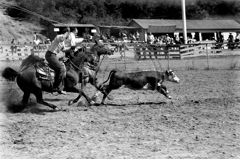 The Old Photo Guy Fortuna California Fortuna Rodeo