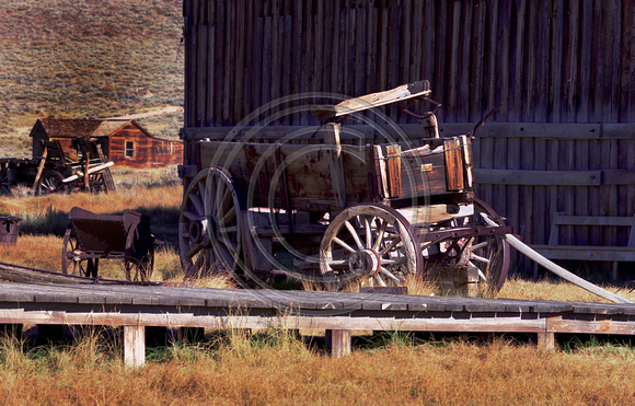 Wagons in Bodie