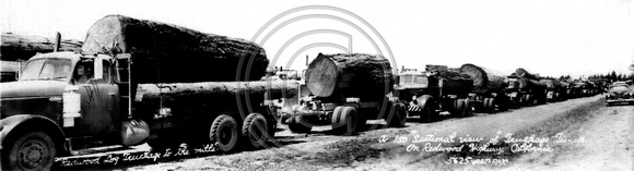 Logging Truck with one log loads Alton  size8x29