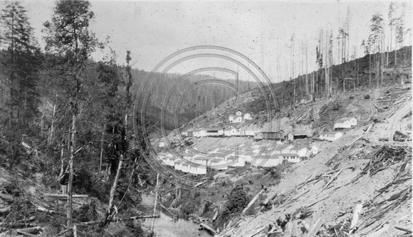 Camp 4 Hillside view Korbel, CA  circa 1928