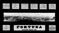 1915 Fortuna Advertisement