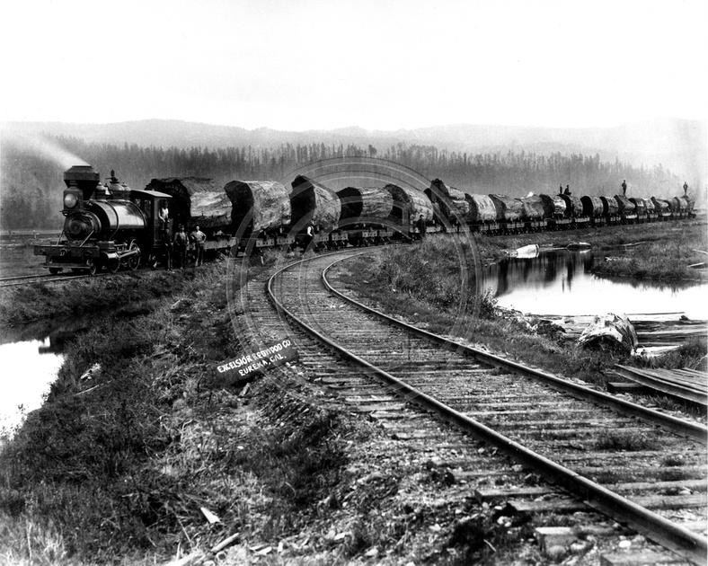 The old photo guy historical logging excelsior redwood