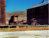 Wagons of Bodie