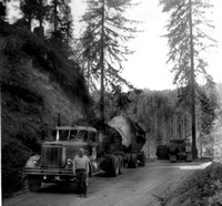 1970's Logging - Roberts collection