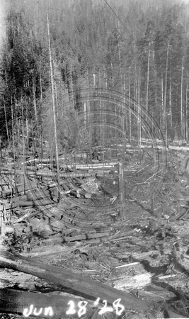 Logging operation  June 28, 1928