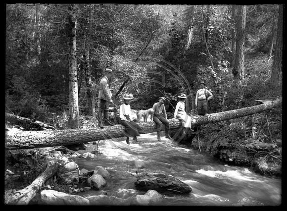 Fishing from a log with 2 women and 2 men and one dog scanned 3-27-12 from 5x7 glass negative