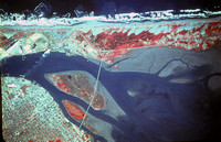 Aerial Infrared of the North Spit Humboldt Bay 1978 SP